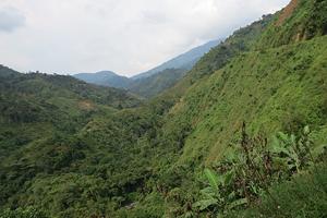 Cinco mil indígenas han sido asesinados en el norte del Cauca en el proceso de recuperación y reconocimiento de su territorio. Foto: VerdadAbierta.com.